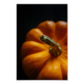 Pumpkin in the Fall Poster