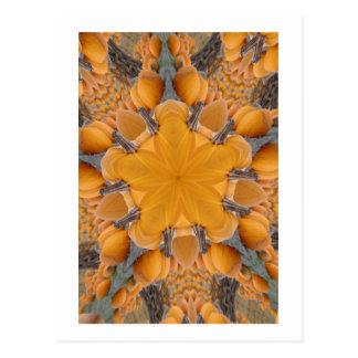 Pumpkin Kaleidoscope Postcard
