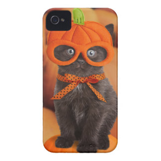 Pumpkin Kitten Barely There iPhone 4 Case