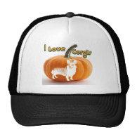 Pumpkin Love Corgis-D smile Mesh Hat