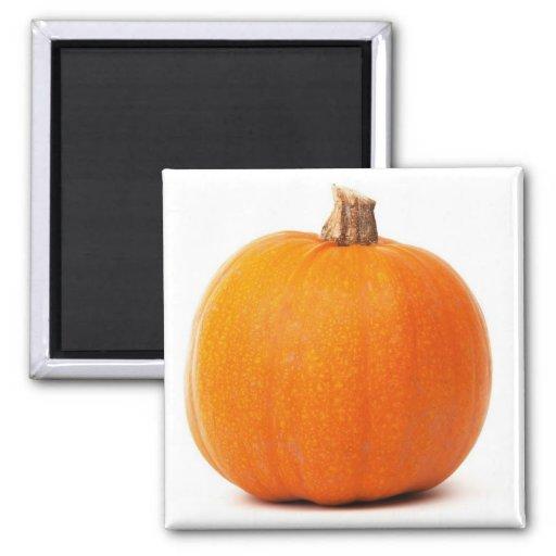 Pumpkin Magnet Magnet