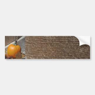 Pumpkin on Old Wooden Stairs Car Bumper Sticker