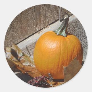 Pumpkin on Old Wooden Stairs Classic Round Sticker