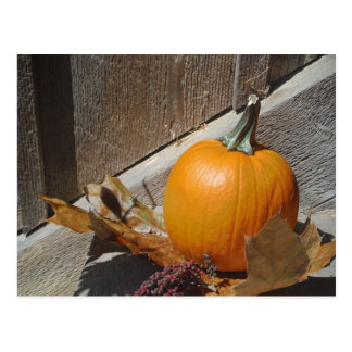 Pumpkin on Old Wooden Stairs Postcard