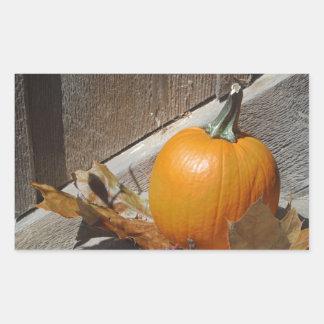 Pumpkin on Old Wooden Stairs Rectangular Sticker