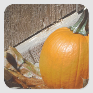 Pumpkin on Old Wooden Stairs Square Sticker