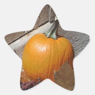 Pumpkin on Old Wooden Stairs Star Sticker