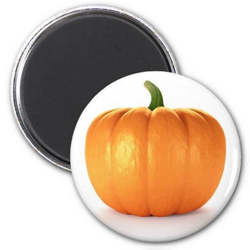 Pumpkin On White Background 2 Inch Round Magnet
