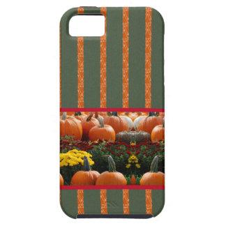 Pumpkin orange green Thanksgiving Autumn Harvest iPhone SE/5/5s Case