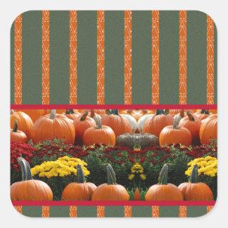 Pumpkin orange green Thanksgiving Autumn Harvest Square Sticker