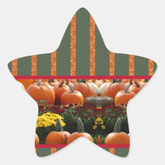 Pumpkin orange green Thanksgiving Autumn Harvest Star Sticker
