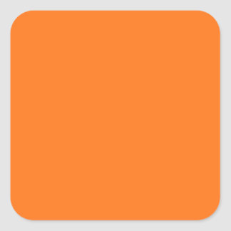 Pumpkin Orange Square Sticker