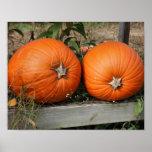 Pumpkin Pair Autumn Posters