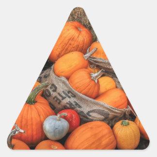 Pumpkin Parade Triangle Stickers