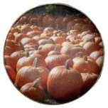 Pumpkin Patch Autumn Harvest Photography Chocolate Covered Oreo