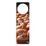 Pumpkin Patch Autumn Harvest Photography Door Hanger