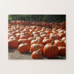Pumpkin Patch Autumn Harvest Photography Jigsaw Puzzle