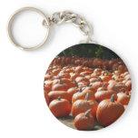 Pumpkin Patch Autumn Harvest Photography Keychain