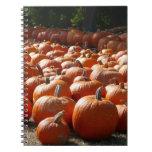 Pumpkin Patch Autumn Harvest Photography Notebook