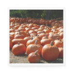 Pumpkin Patch Autumn Harvest Photography Paper Napkin
