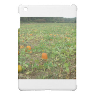 Pumpkin patch case for the iPad mini