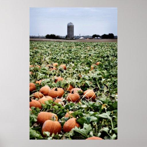Pumpkin Patch Farm Poster