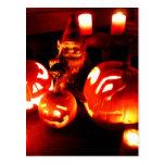 Pumpkin Patch Gnome I Post Cards