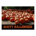 Pumpkin Patch Happy Halloween Card