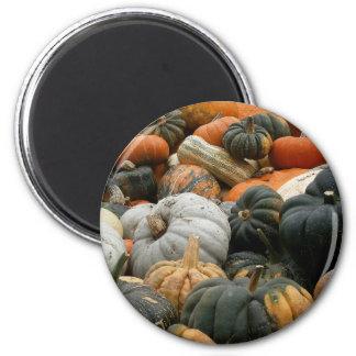 Pumpkin Patch Magnet