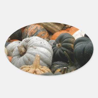 Pumpkin Patch Oval Sticker