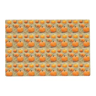 Pumpkin Patch Placemat