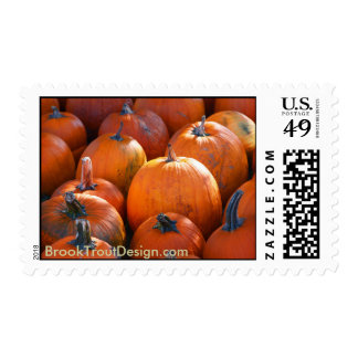 Pumpkin Patch Postage Stamp