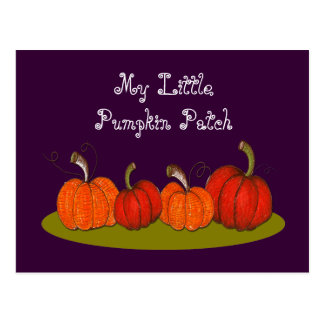 Pumpkin Patch Postcard