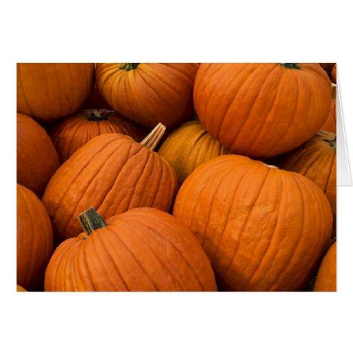 Pumpkin Patch Thank You Card