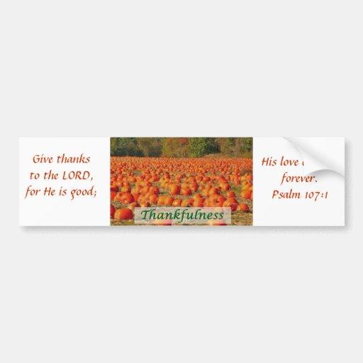 Pumpkin Patch - Thankfulness Bumper Sticker