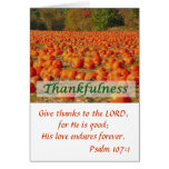 Pumpkin Patch - Thankfulness Greeting Cards