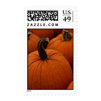 Pumpkin Photo Autumn postage