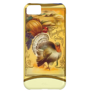 Pumpkin pie and Turkey Cover For iPhone 5C