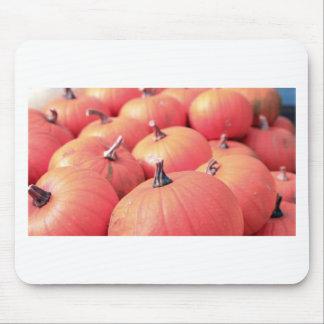 pumpkin portrait mouse pad