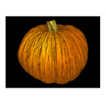 Pumpkin Post Card