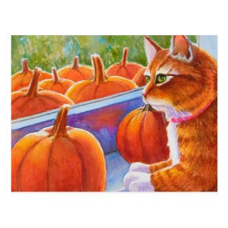 Pumpkin, Pumpkin Cat Postcard