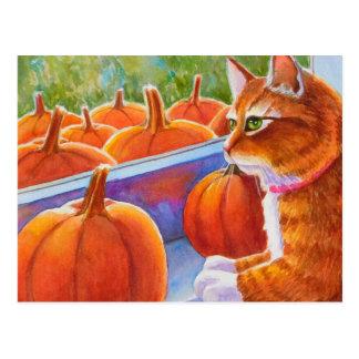 Pumpkin, Pumpkin Cat Postcard