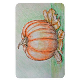 Pumpkin Rectangular Photo Magnet