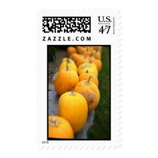 Pumpkin Row Postage Stamps