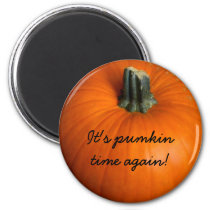 Pumpkin season magnet