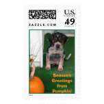 Pumpkin, Season's Greetings Postage Stamp