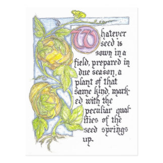 Pumpkin Seed Story Postcard