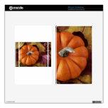 Pumpkin Spice Kindle Fire Decal