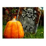 Pumpkin There Postcard
