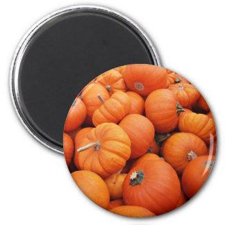 Pumpkin Time 2 Inch Round Magnet